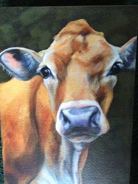 Painting of Bess the cow